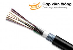 Dây cáp quang Multimode 24 sợi (24 FO) Indoor/Outdoor